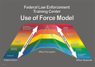 The Use of Force continuum guides officer response to violence and lethal threat