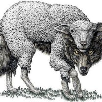 a-wolf-in-sheeps-clothing